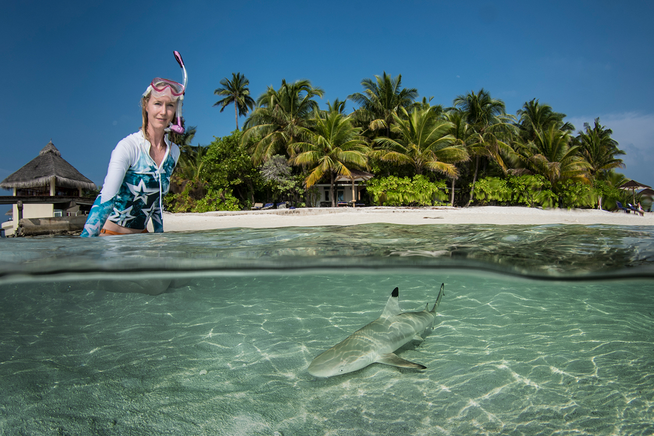 Juvenile blacktip reef shark in Maldives © Simon Lorenz / WWF-Hong Kong
