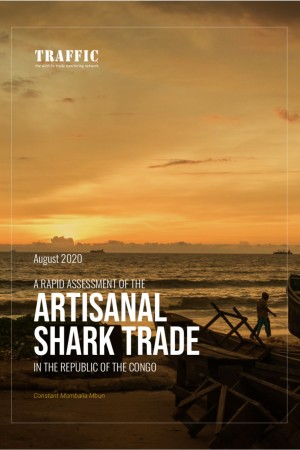 A Rapid Assessment of the Artisanal Shark Trade in the Republic of the Congo (2020)