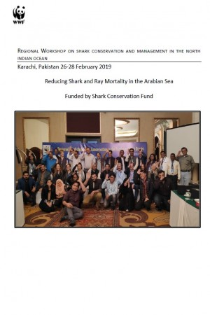 Reducing Shark and Ray Mortality in the Arabian Sea (2019)