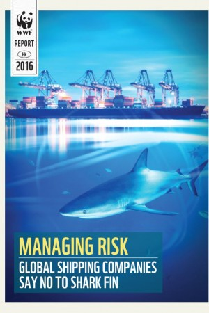 Managing Risk - Global Shipping Companies Say No to Shark Fin